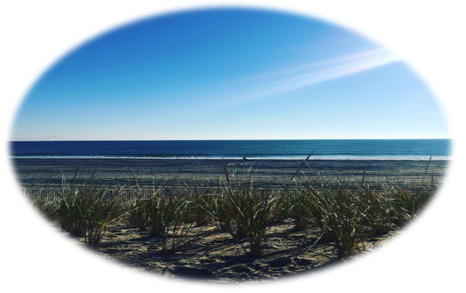 LBI New Construction Buyer | Buying Long Beach Island New